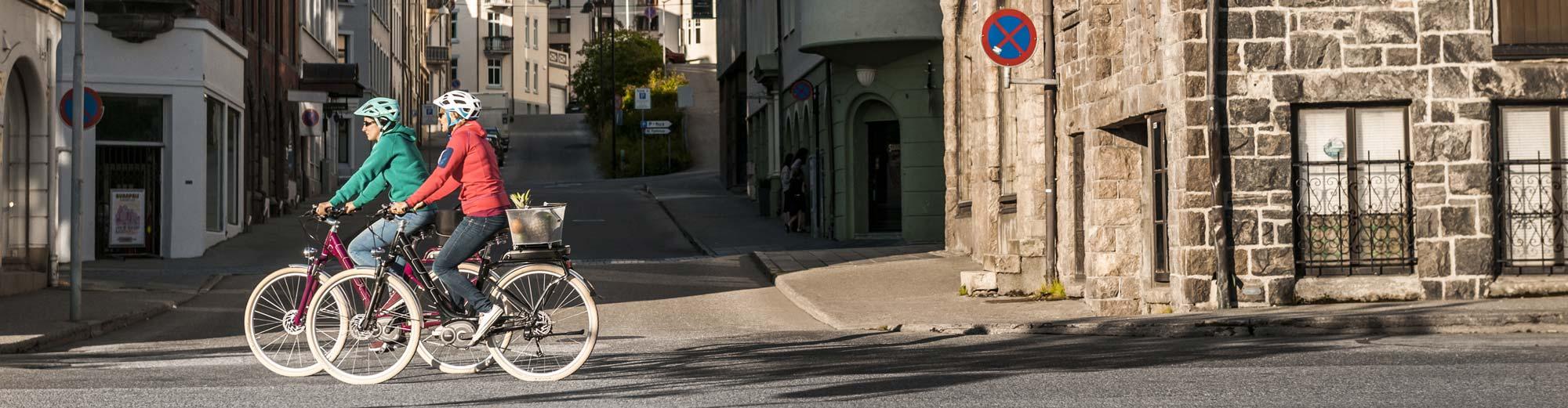 Tiefeinsteiger E-Bike Trekkingrad