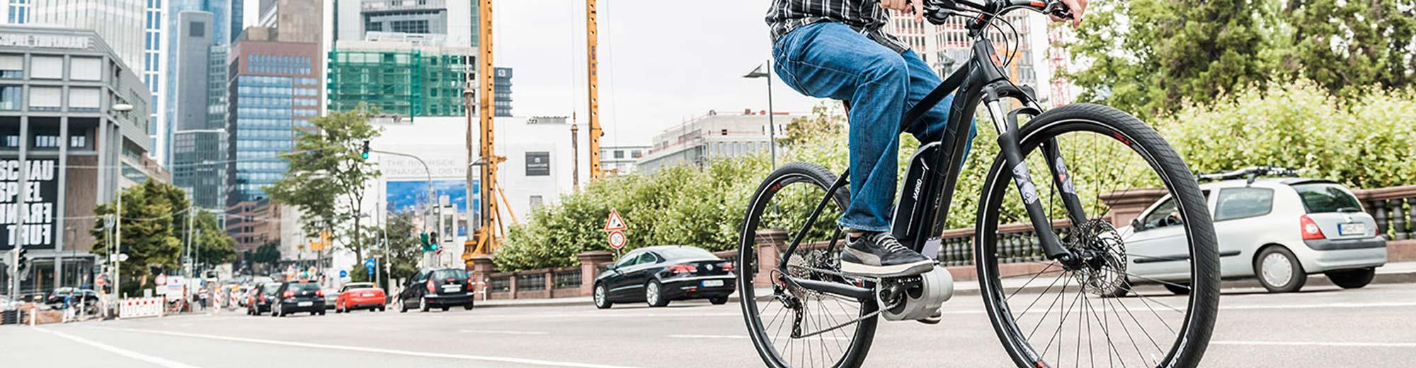 Herren E-Bikes Cross- und Fintessräder