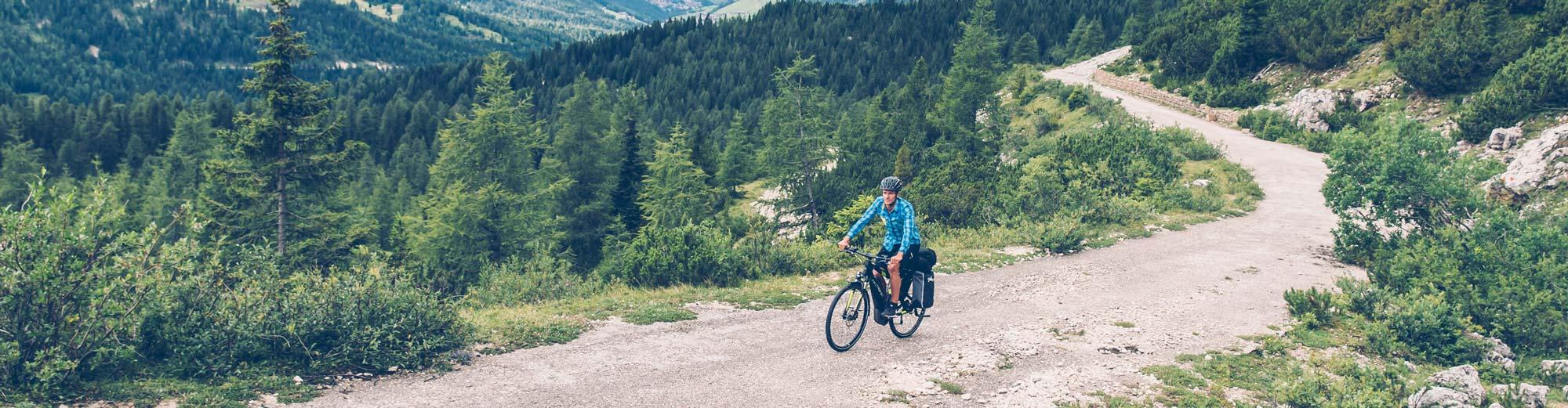 E-Bike Trekkingräder und Citybikes