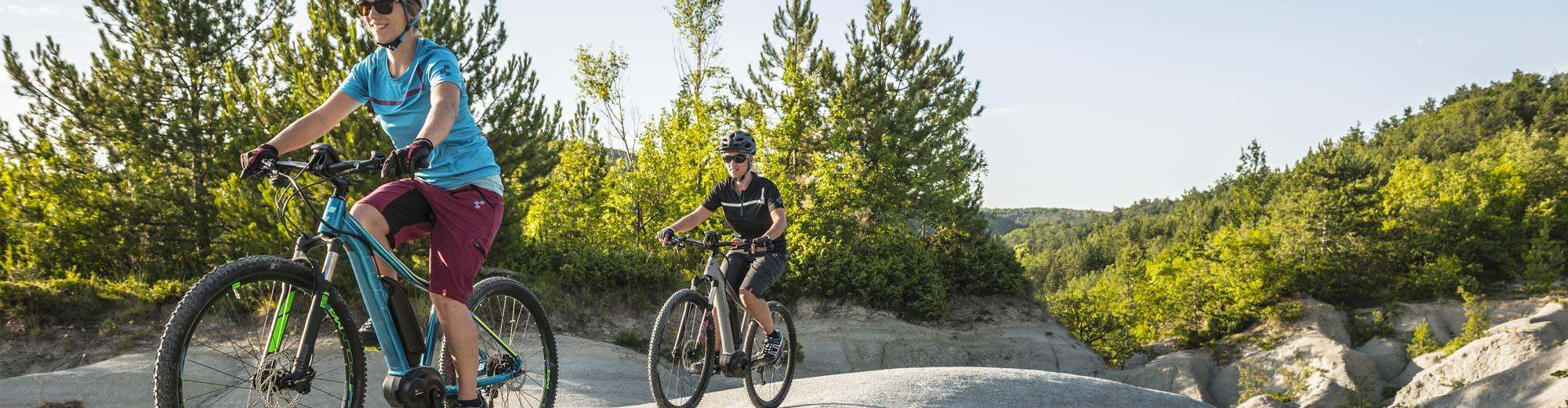 E-Mountainbikes Hardtail
